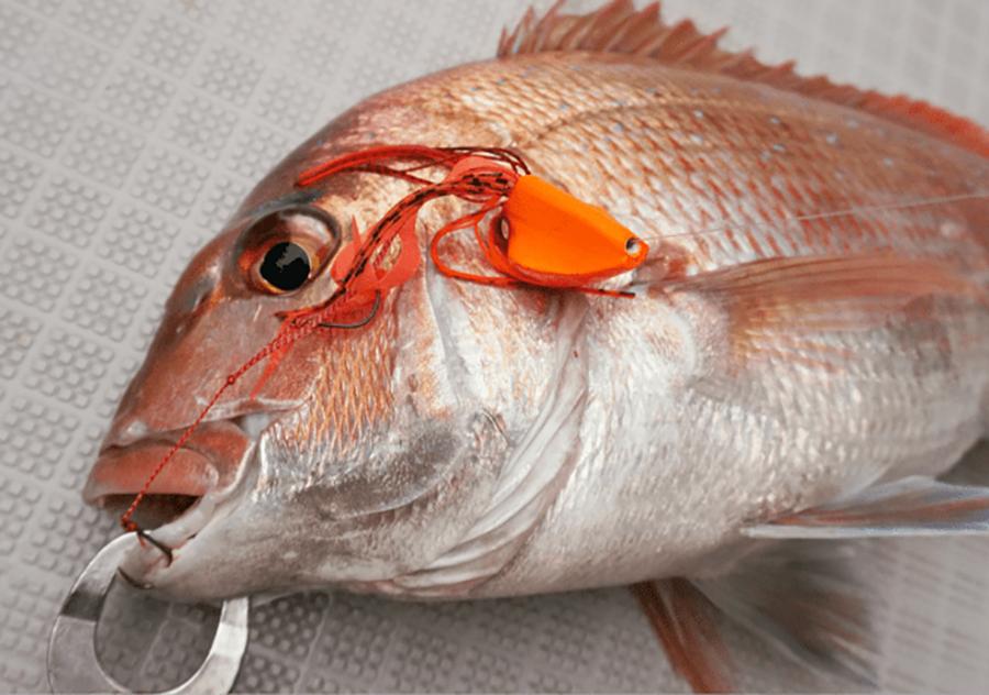 image peche poisson freeslide se171 hayabusa - amiaud