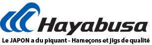 Hayabusa-france