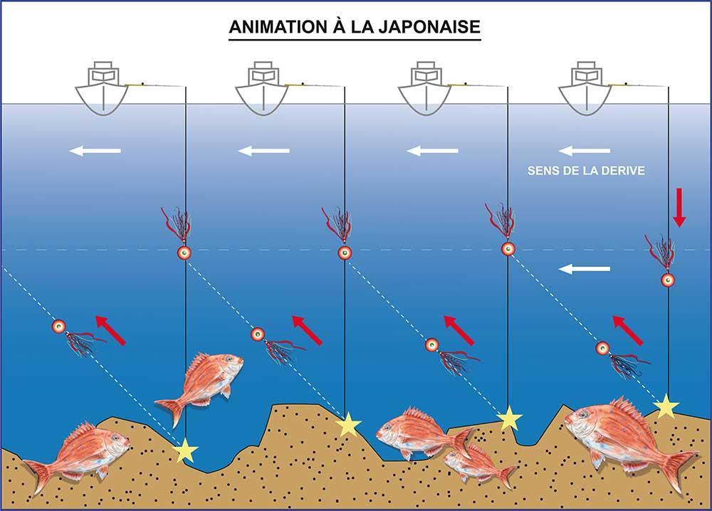 Animation à la japonaise hayabusa pêche