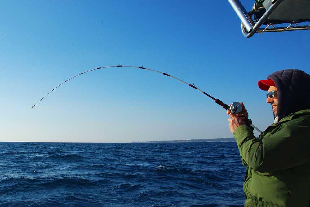 ferrage pêche au madaï hayabusa