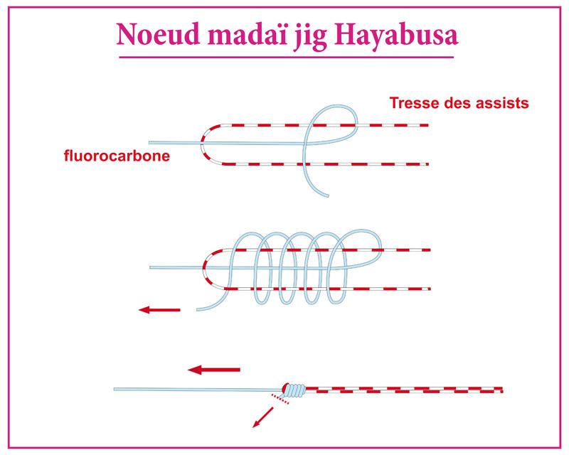 noeud pêche madaï jig hayabusa