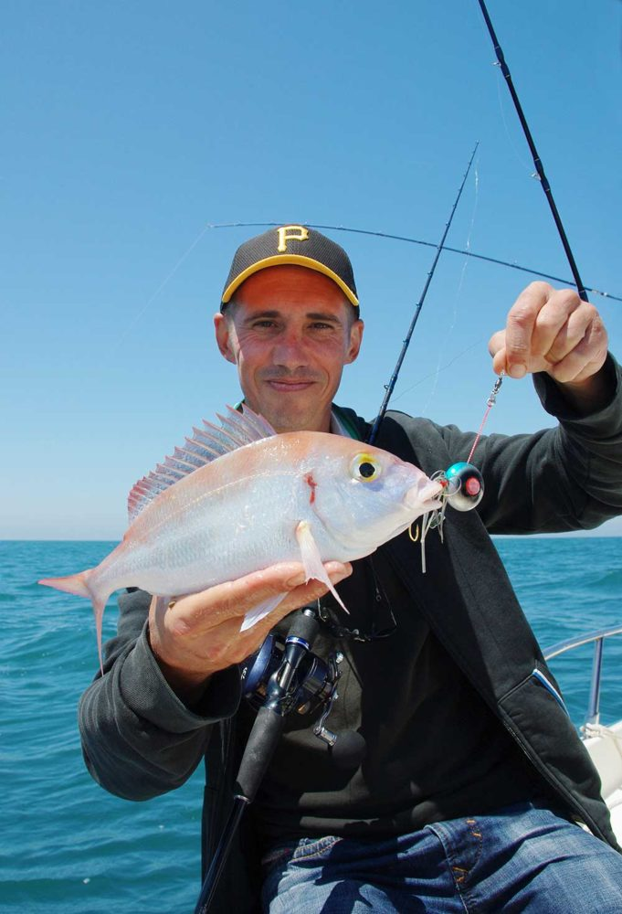 pêche madaï Hayabusa