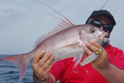 Vous noterez que le poisson a mordu sur les assist hooks holographiques !
