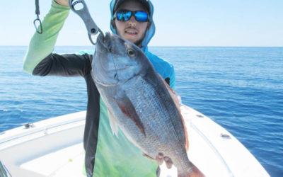 Pêche au tenya Hayabusa: les conseils de Nicolas