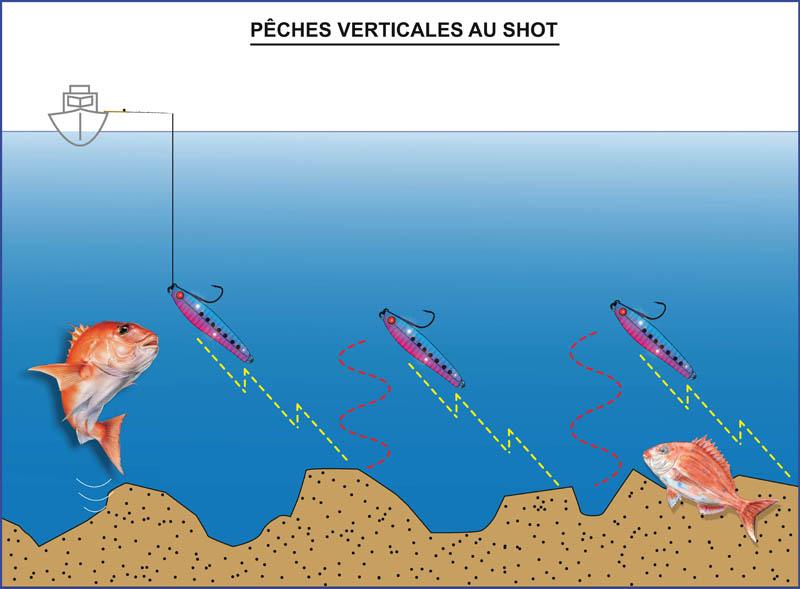 Shot Hayabusa pêche verticale