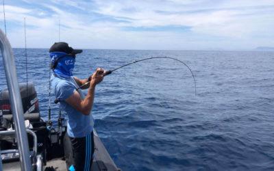 Pêches profondes au tenya Hayabusa