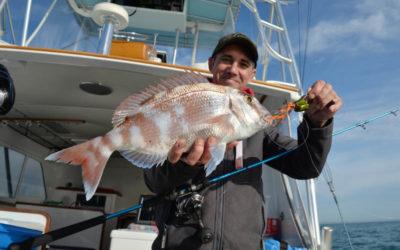 Madaï jig Wobbling fall Hayabusa: La pêche en diagonale